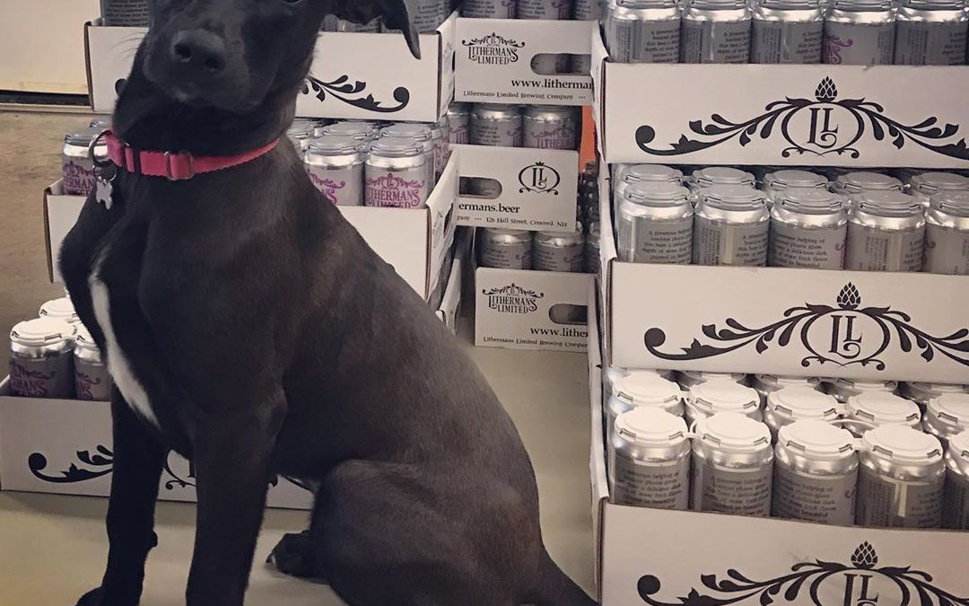 Tootie has been helping us with deliveries today. However she did want us to let everyone know that we are open today from 4 to 8 PM with 10 beers on tap and the Dueling Chefs food truck will be here Serving up some great food. #lithermanslimited #foodtruck