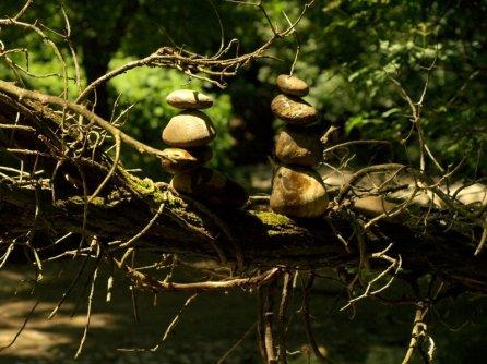La branche était tentante mais... que des petits galets dans la rivière.