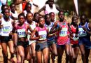 Lotto National Cross Country Championship Postponed to Mid-February