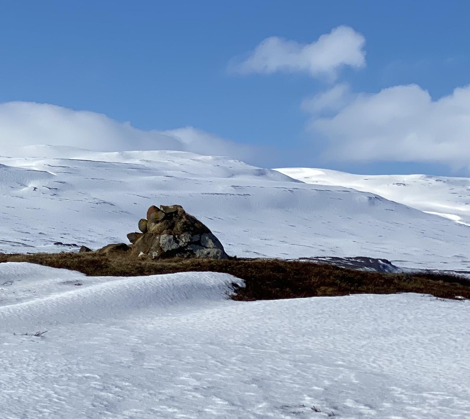 Háavarða