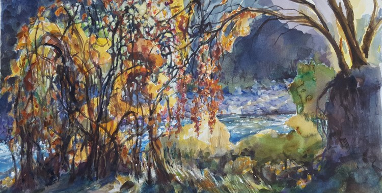 grapevines by Della Heywood