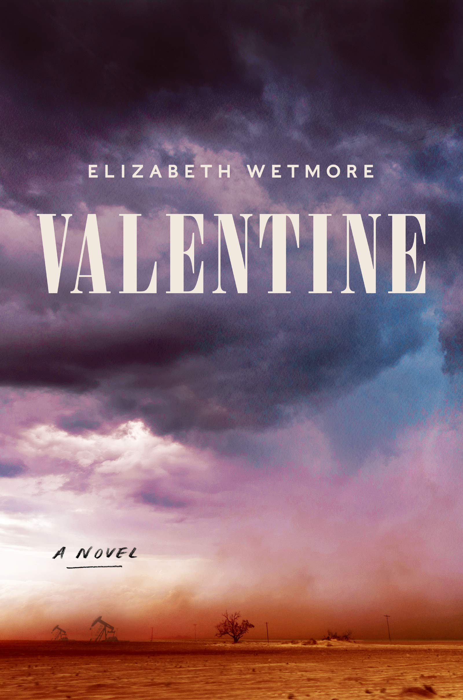 front cover of Valentine