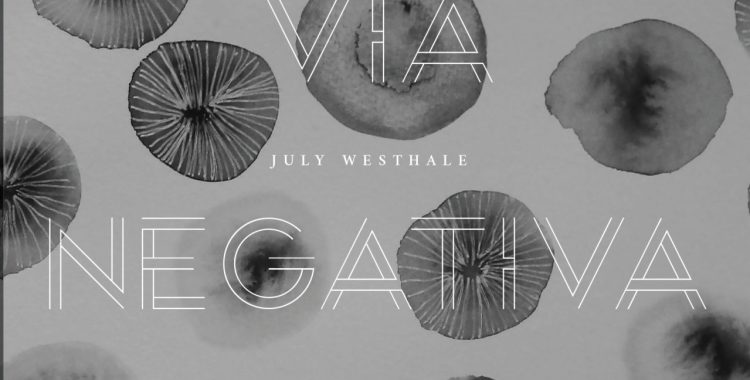 front cover of Via Negativa by July Westhale