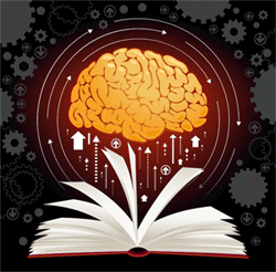 Your Brain on Books
