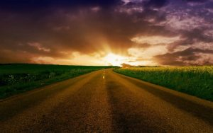 Gimbling in the Wabe – Gimbling into the Sunset