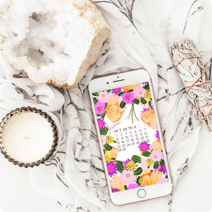 iPhone wallpaper with painted colourful flowers calendar by Jimena Garcia (LittlCrow)