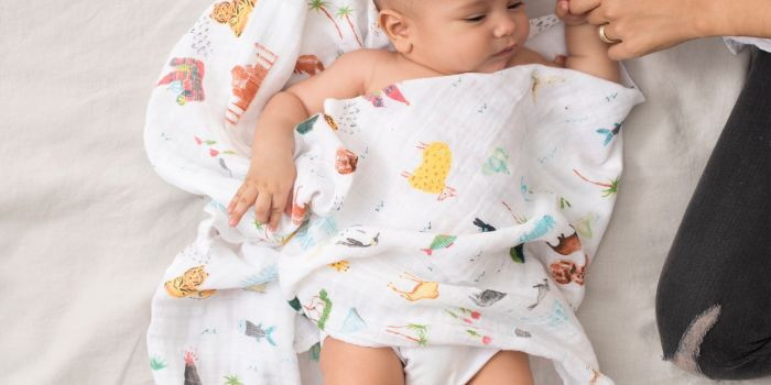 Aden Anais Baby Swaddle 4pk Around The World Sites 2076 7