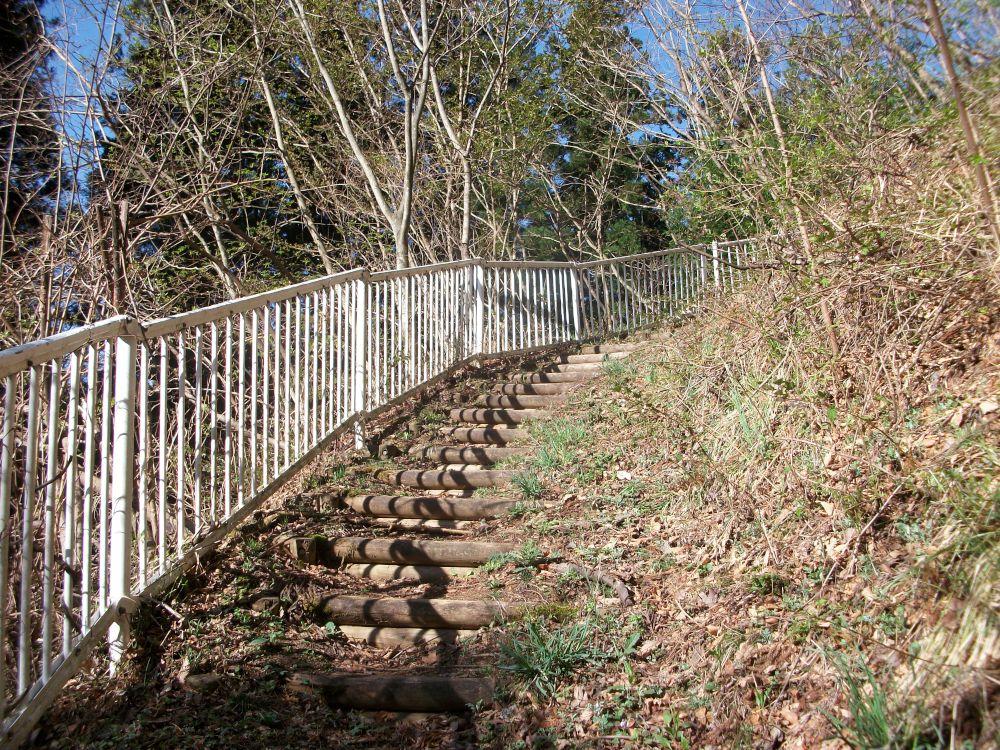 城峰山の林道から登山道その2