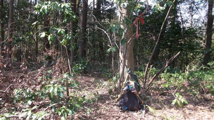 仙洞寺山 <583m> (JA/KN-019) 神奈川県相模原市緑区