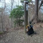 茅丸 <1019m> (JA/KN-013) 神奈川県相模原市緑区/東京都西多摩郡檜原村