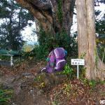 高塚山 <216m> (JA/CB-012) 千葉県南房総市