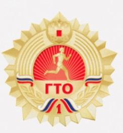 Значок ГТО образца 2014 года