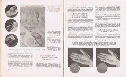 Москва, Медгиз; «Книга о здоровье»; 1959; СССР; Габариты: 26х20х3,5 см.; «Книга о здоровье» / под ред. Д.А. Жданова (отв. ред.) [и др.] – М. Медгиз, 1959. – 443 с.