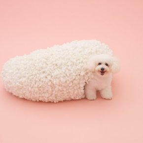 ARCHITECTURE FOR DOGS - NOT AS SILLY AS YOU MAY THINK