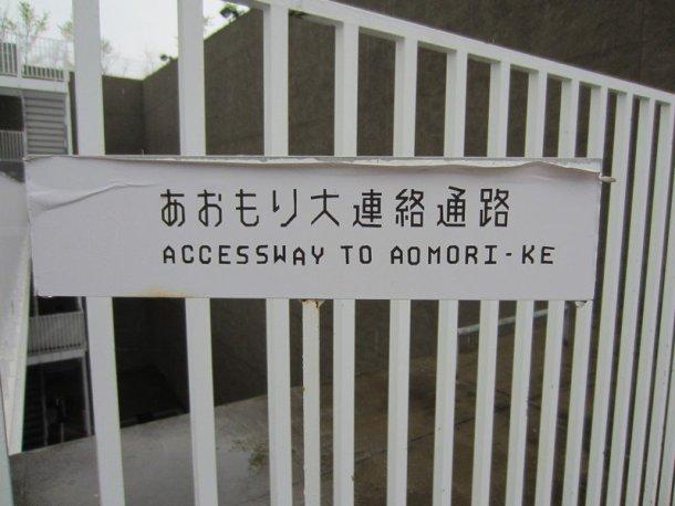aomori museum of art 3