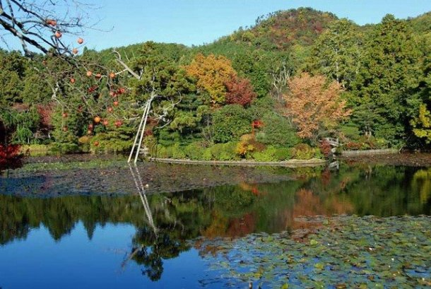 ryoan-ji temple3 top 10 kyoto