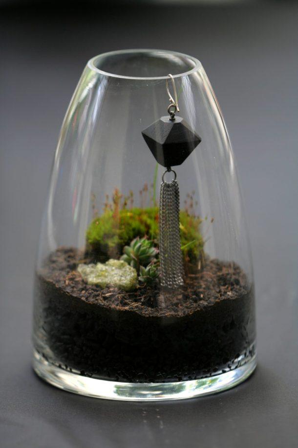 terrariums 2