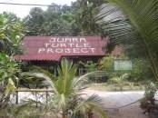 Turtle HQ