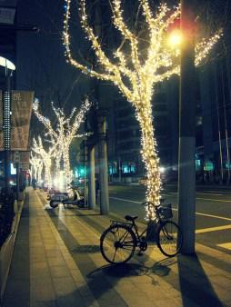 Lichterketten in den Bäumen