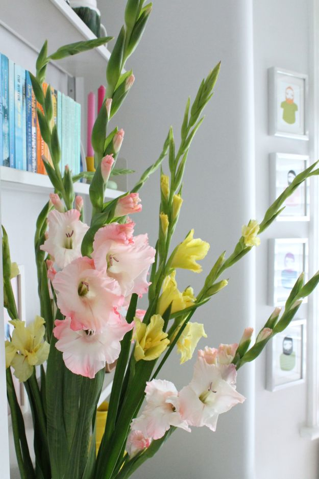 Gladiolus-flowers-photo-by-Geraldine-Tan-Little-Big-Bell
