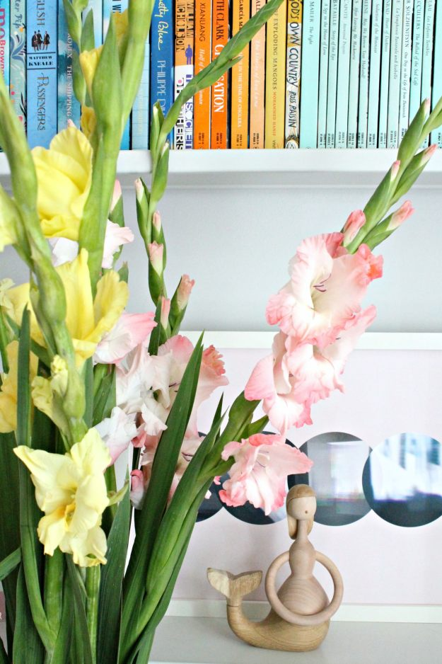 Pink-and-yellow-Gladiolus-photo-by-Little-Big-Bell