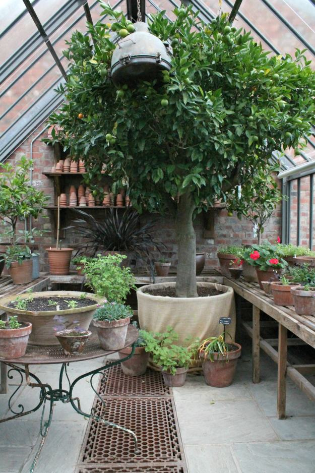 green-house-soho-farmhouse-little-big-bell