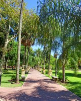 Parque Lezama in San Telmo