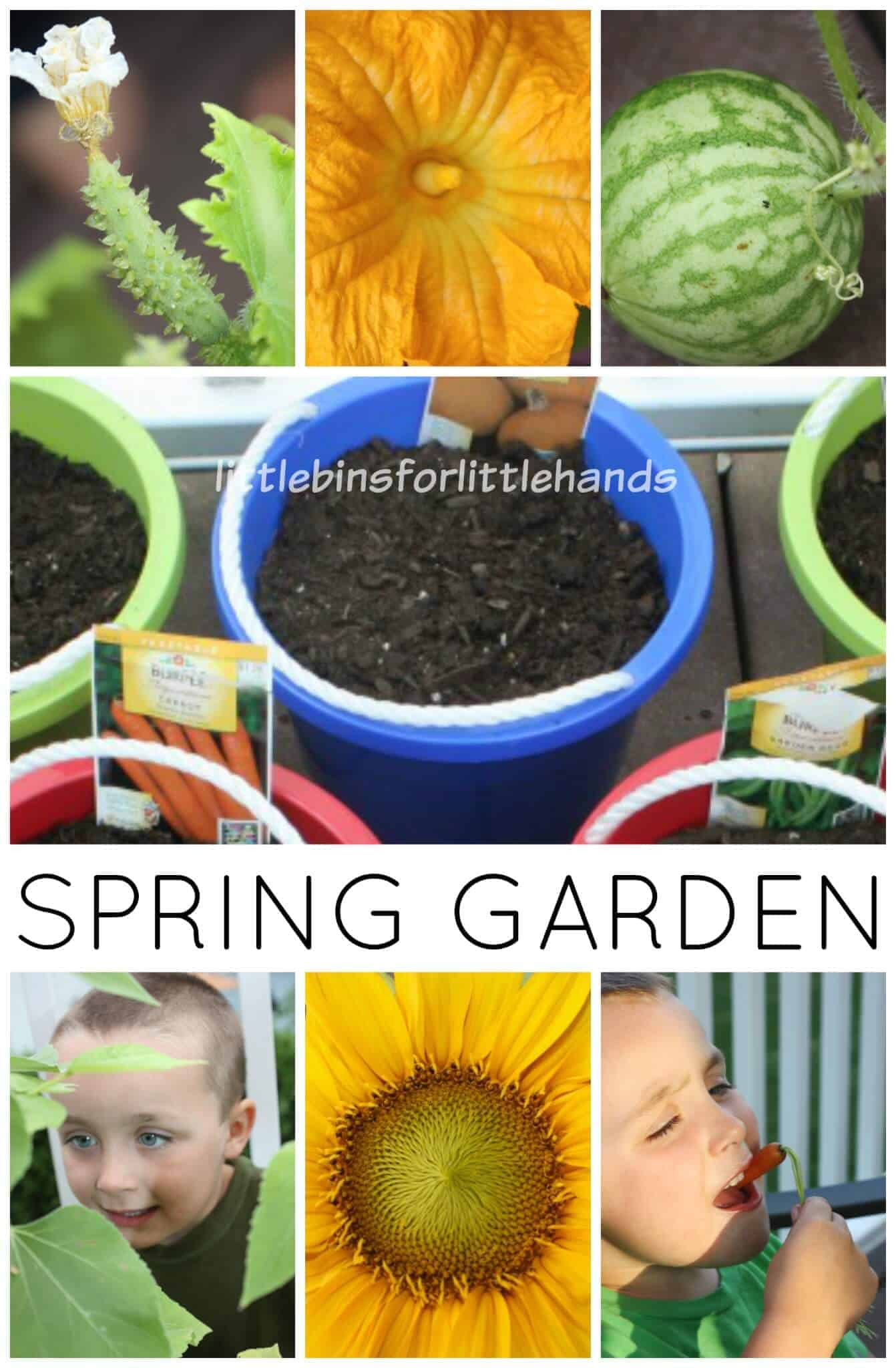 Spring Garden Activity With Surprise Garden Book