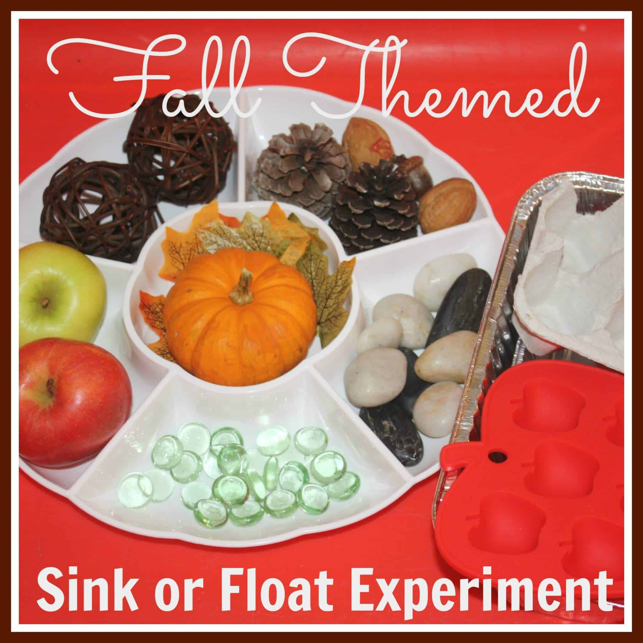 Fall Sink Float Science Invitation To Experiment