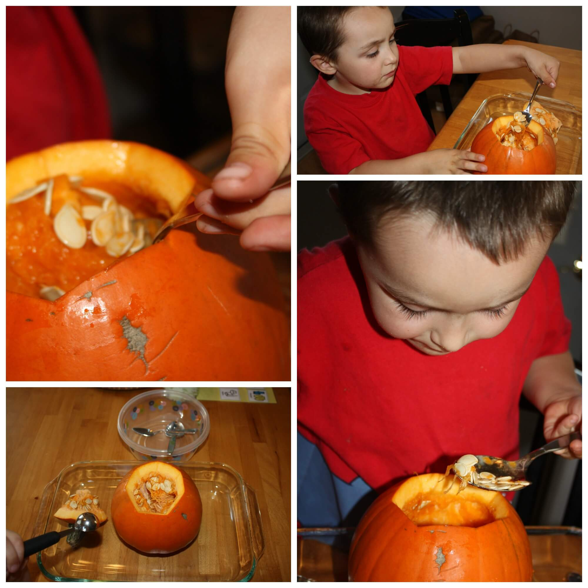 Pumpkin Sensory Play And Science Activity For Kids