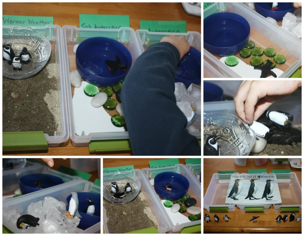 Penguin Activities For Preschool