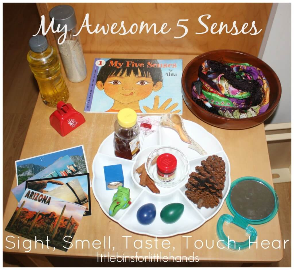 5 Senses Activities For Preschoolers