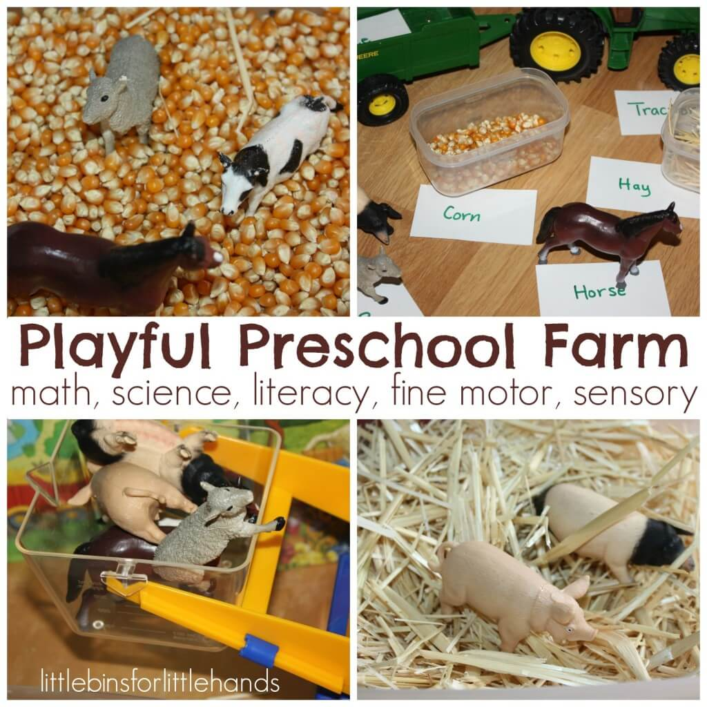 Preschool Farm Activities And Sensory Play Ideas For Math Science And Literacy