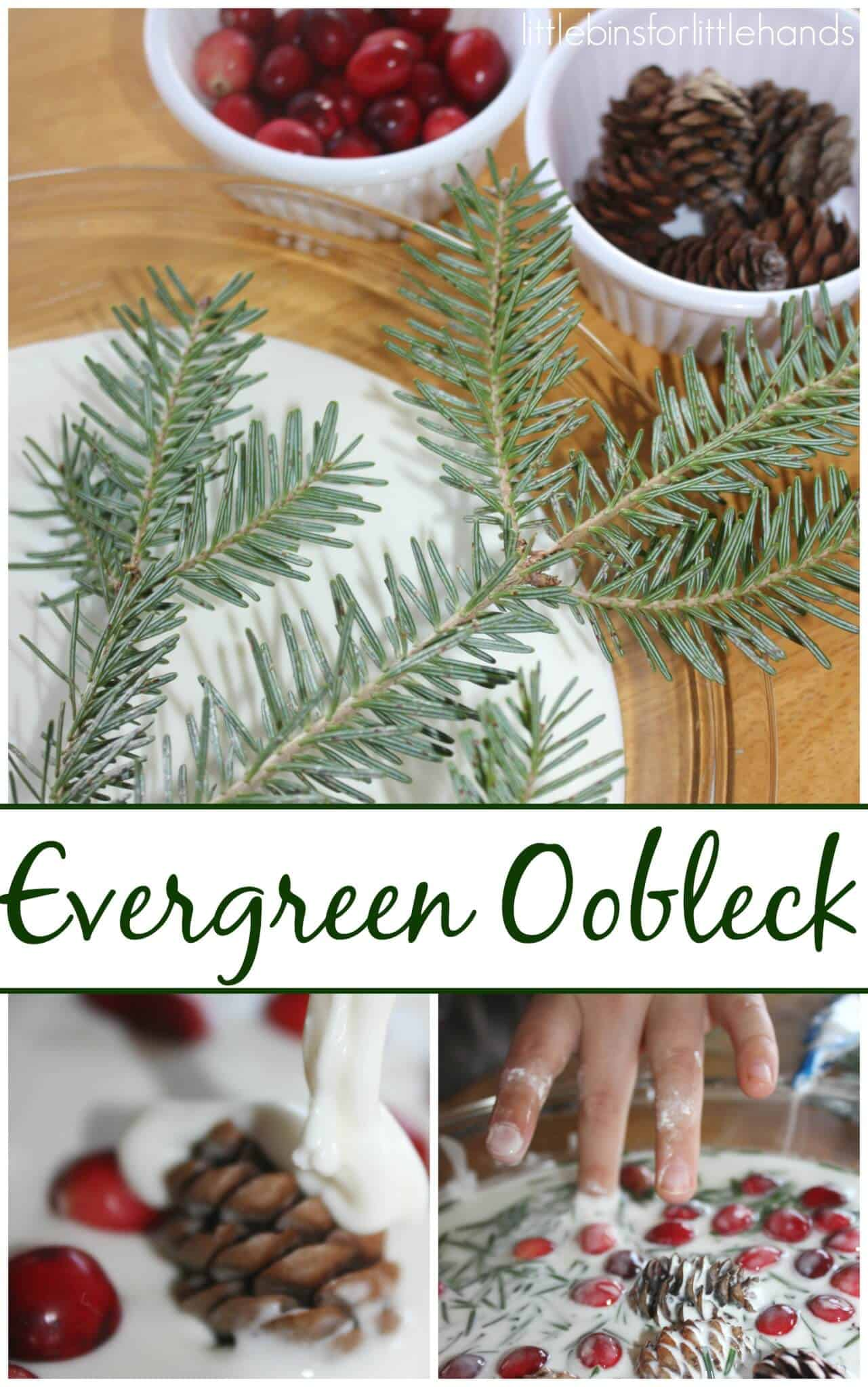 Christmas Tree Evergreen Oobleck Science Sensory Play
