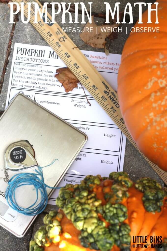 Measuring Pumpkins Math Activity Free Printable Worksheets