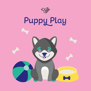 Puppy play book box - order now!