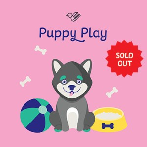 Puppy play book box - sold out!