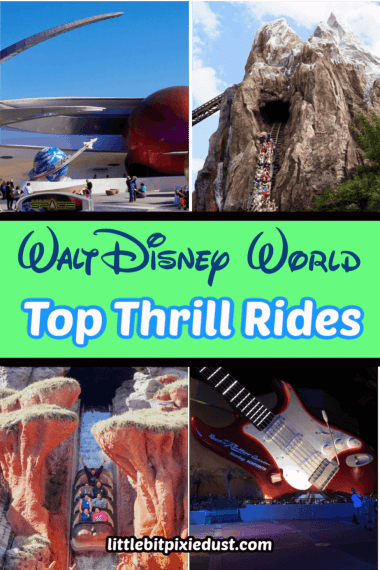Disney World Thrill Rides