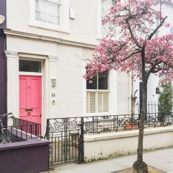 Wow! Look at this pink door set so perfectly in a mass of iron gates and a blooming tree!-pinterest