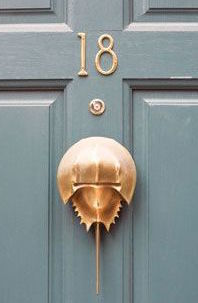 copper crabshell door knocker on gray door via pinterest