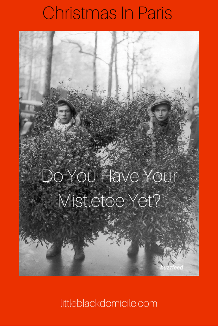 Holiday Decorating Traditions -Does Anyone Still Use Tinsel? -litttleblackdomicile
