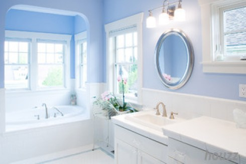 houzz periwinkle wall bathroom