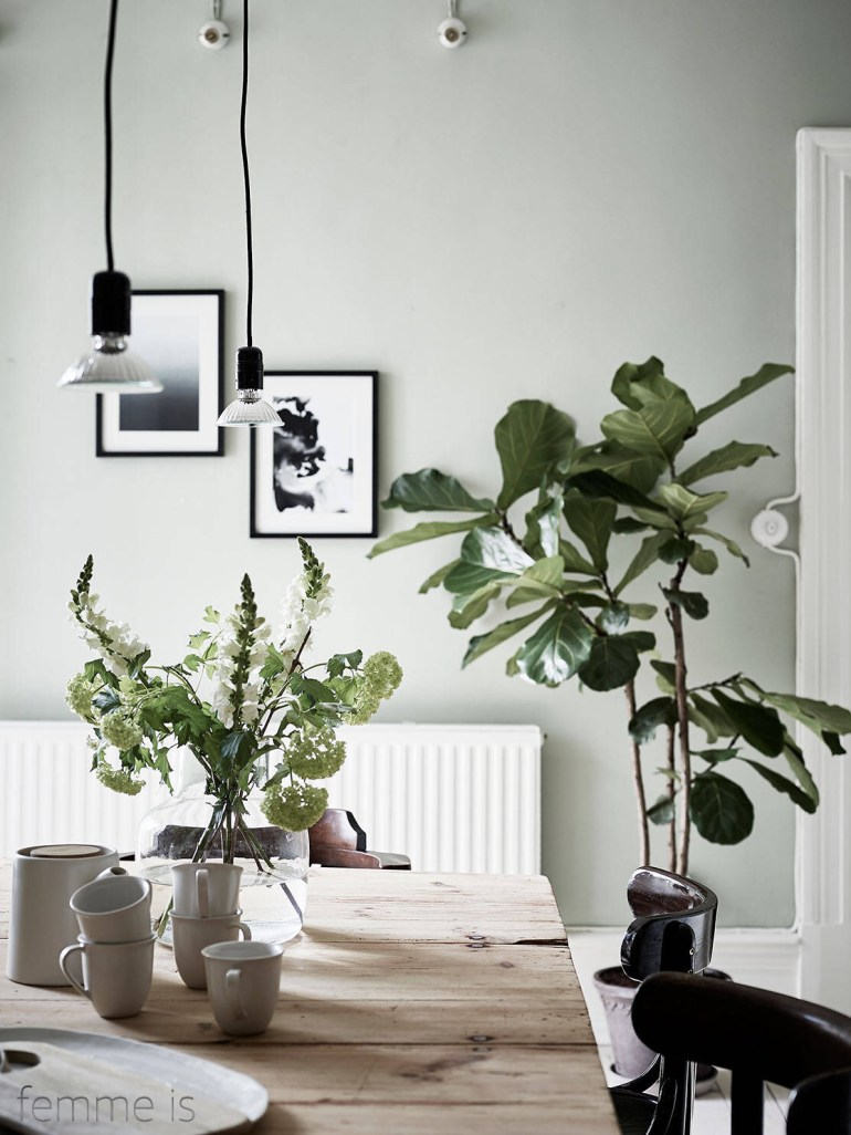femmes-pale-green-walls-wooden-dining-table-black-chairs