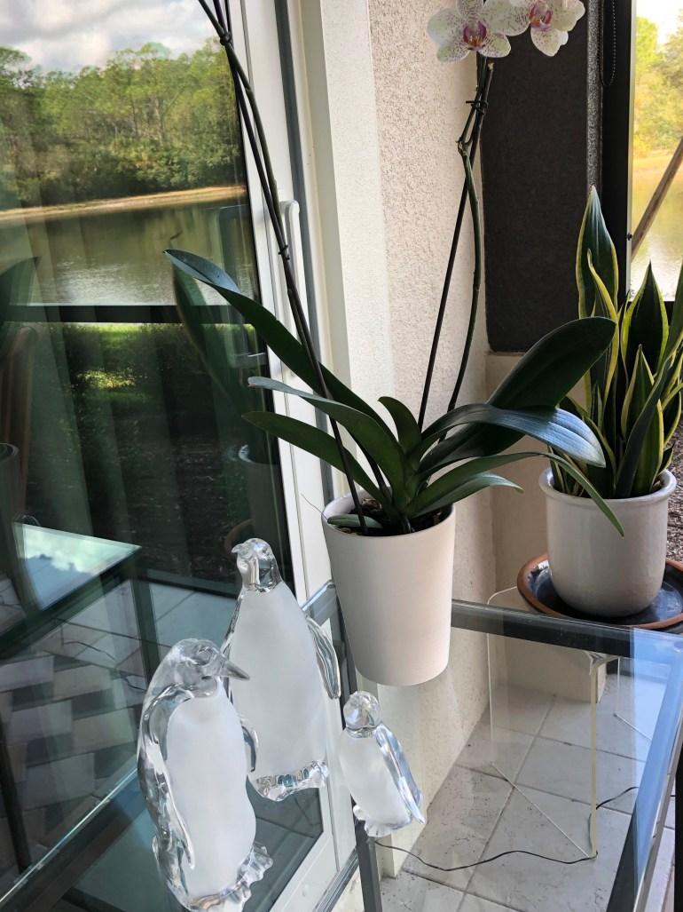 laurelbledsoedesign-minimalistic-holiday decor-glass-peguins