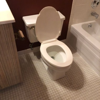 laurelbledsoedesign-beforeandafterbathroommakeover-yucky-bathroom-before-makeover