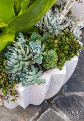 Atlantahomes-succulents-whiteplanters