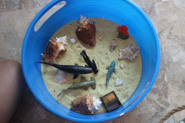 shark sensory bin
