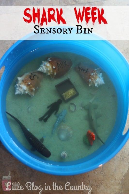 shark week bin