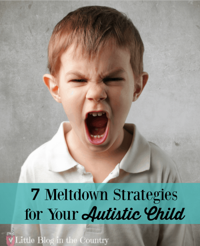 Meltdown Strategies for Your Autistic Child