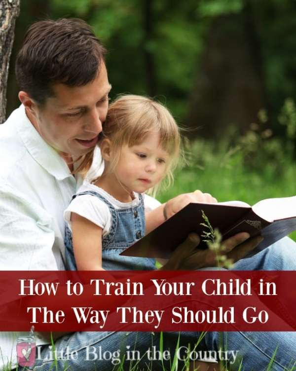 train your child in the way they should go